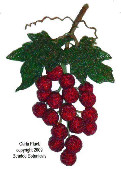 Large Red Grapes